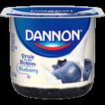 Dannon blueberry yogurt pack